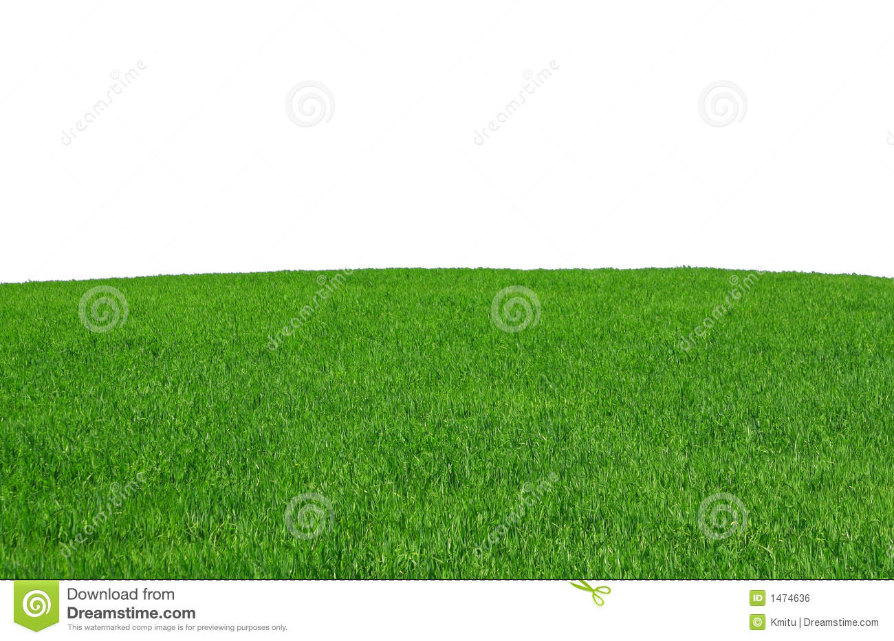 Isolated grass field