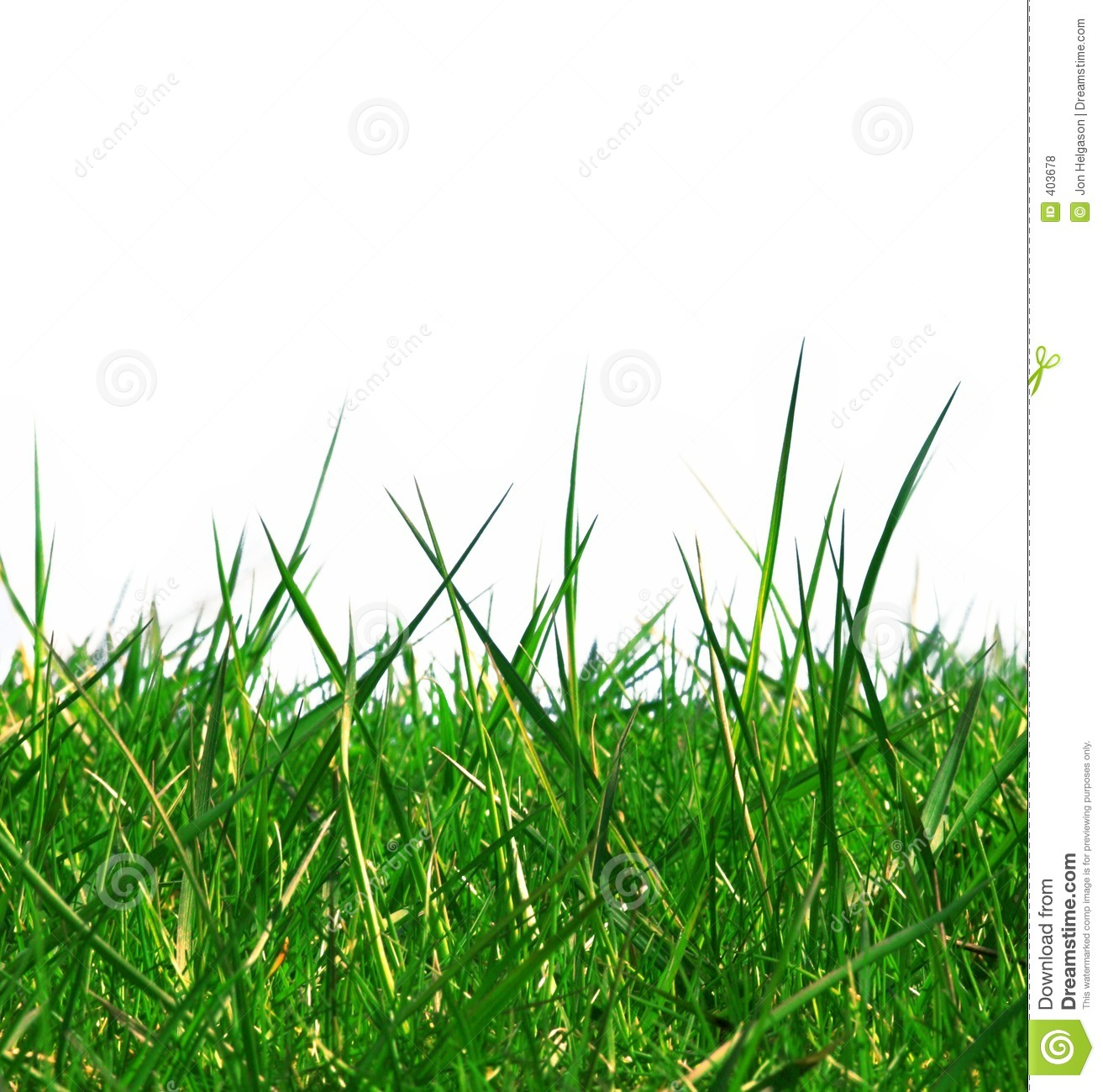 Isolated Green Grass Royalty Free Stock Photos - Image: 403678