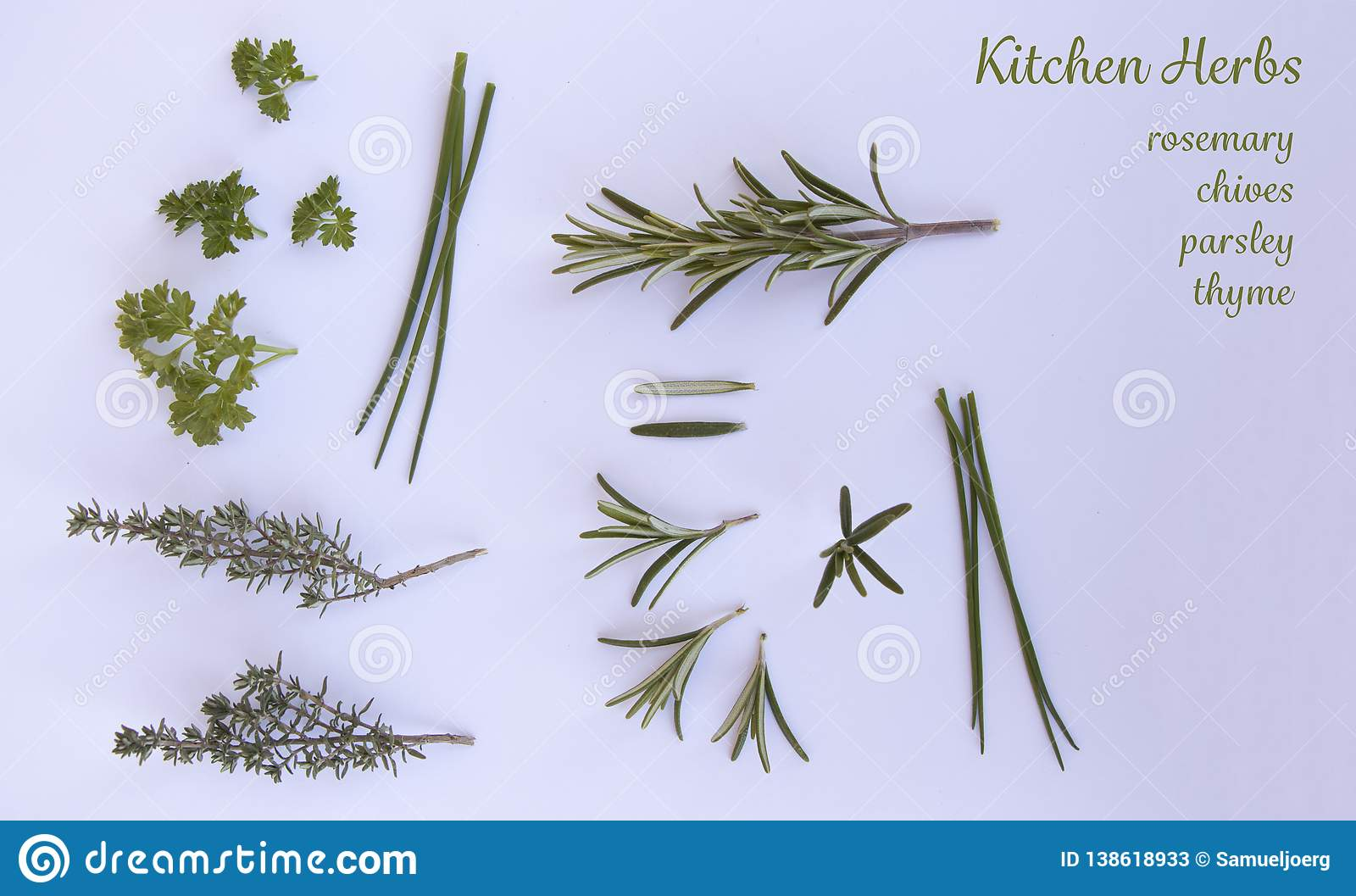 Isolated herbs on a white background