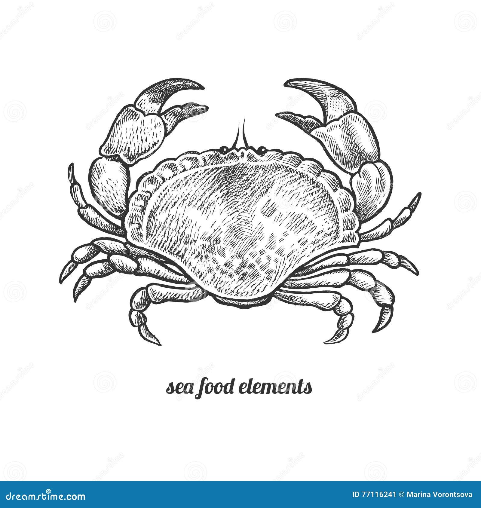 Isolated image crab on white background.
