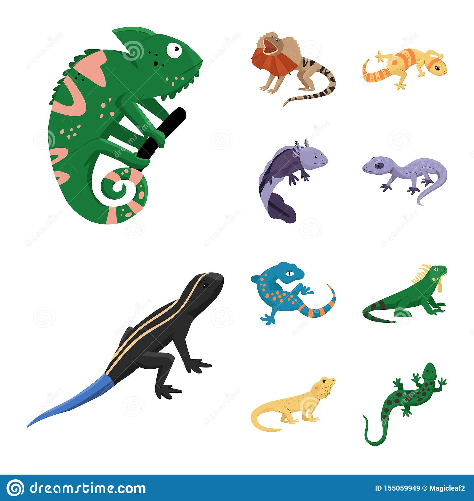 Isolated object of animal and reptile sign. Collection of animal and nature stock symbol for web.