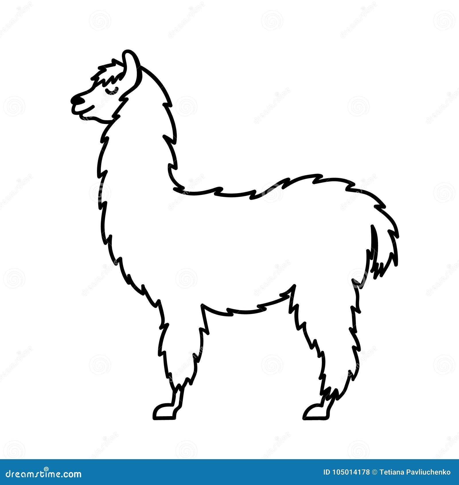 Line Drawing Llama : Isolated outline cartoon baby llama stock vector