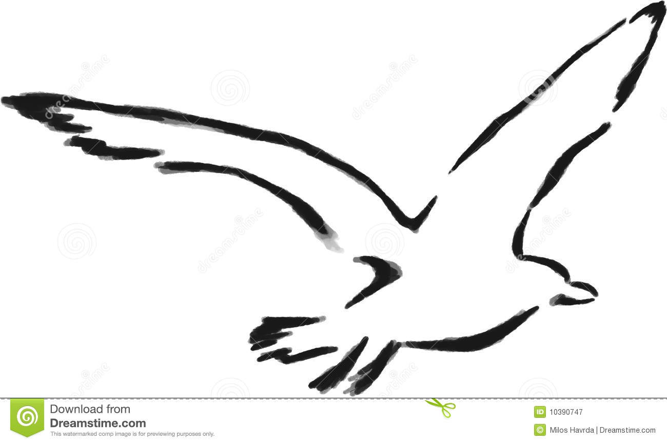 Isolated Outline Seagull Royalty Free Stock Photography - Image ...