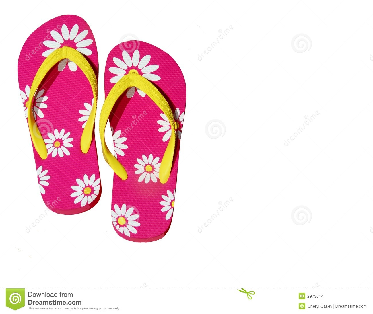 Isolated Pink Flip Flops Stock Photo Image Of Recreation 2973614