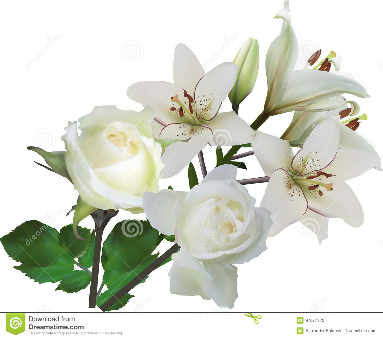 Isolated Pure White Rose And Lily Flowers Bunch Stock Vector