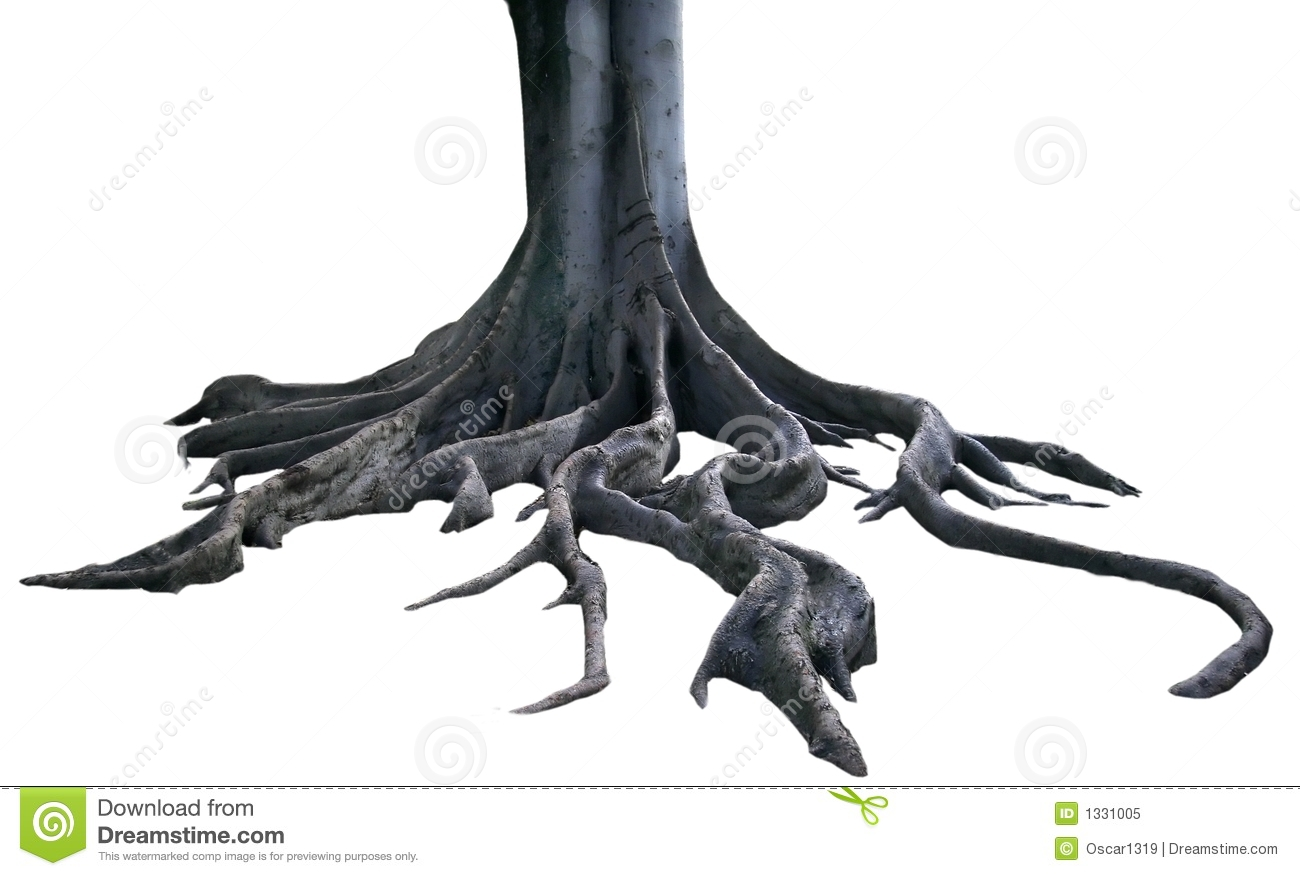 Isolated roots