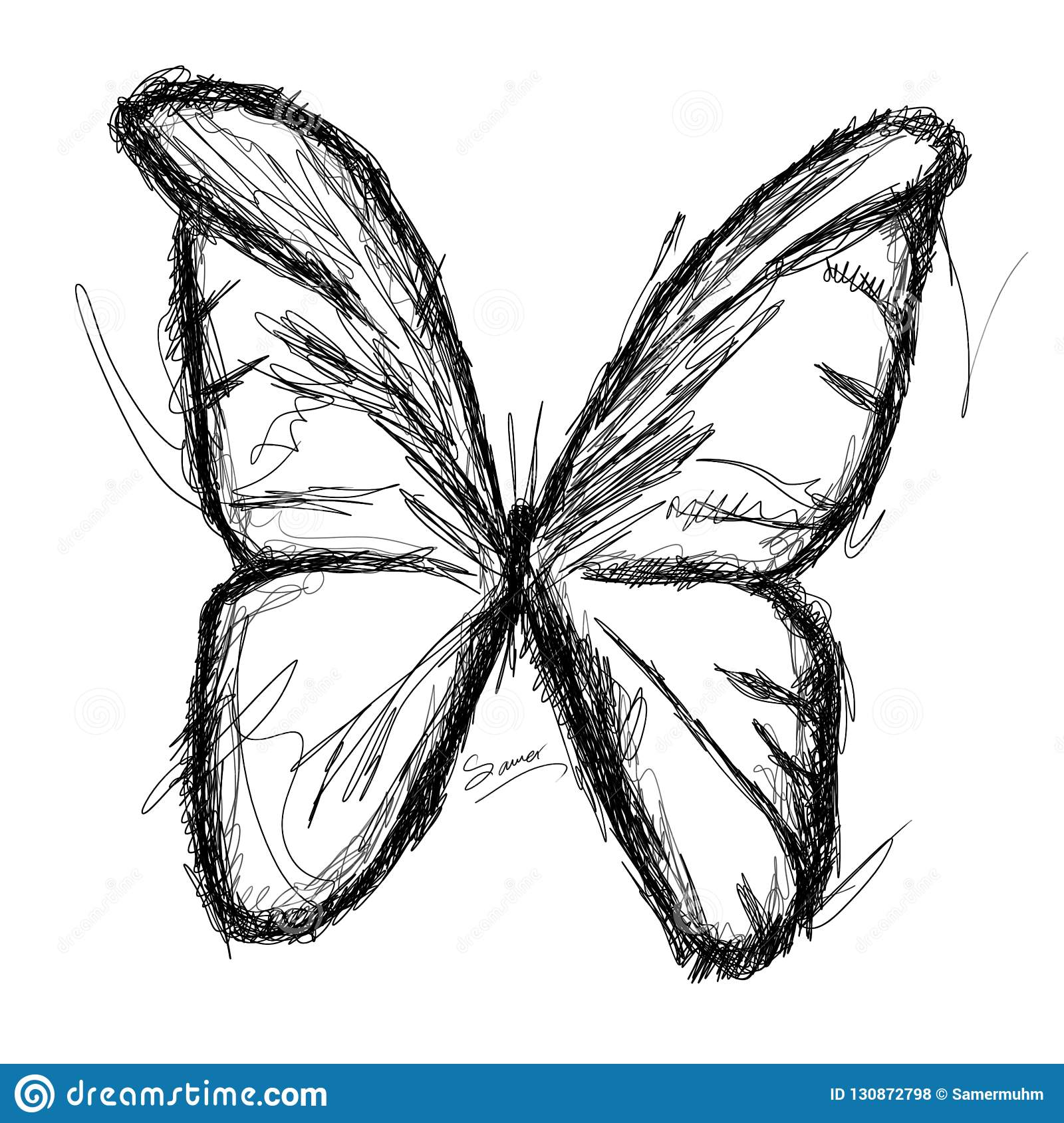 Isolated sketch lines with black and white colors butterfly