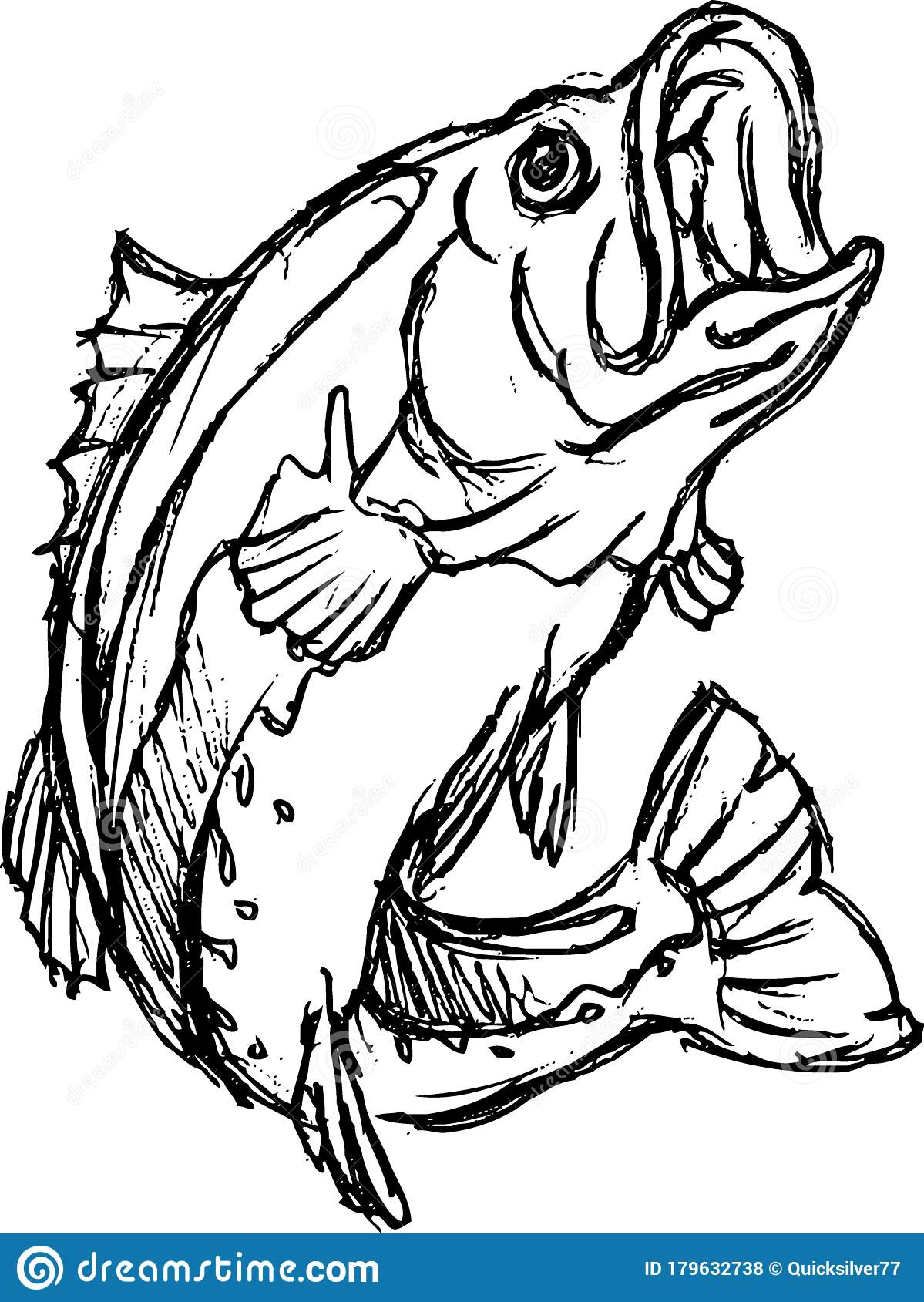 Bass Fish Sketch Large Open Mouth Stock Vector Illustration Of Saltwater Drawing 179632738