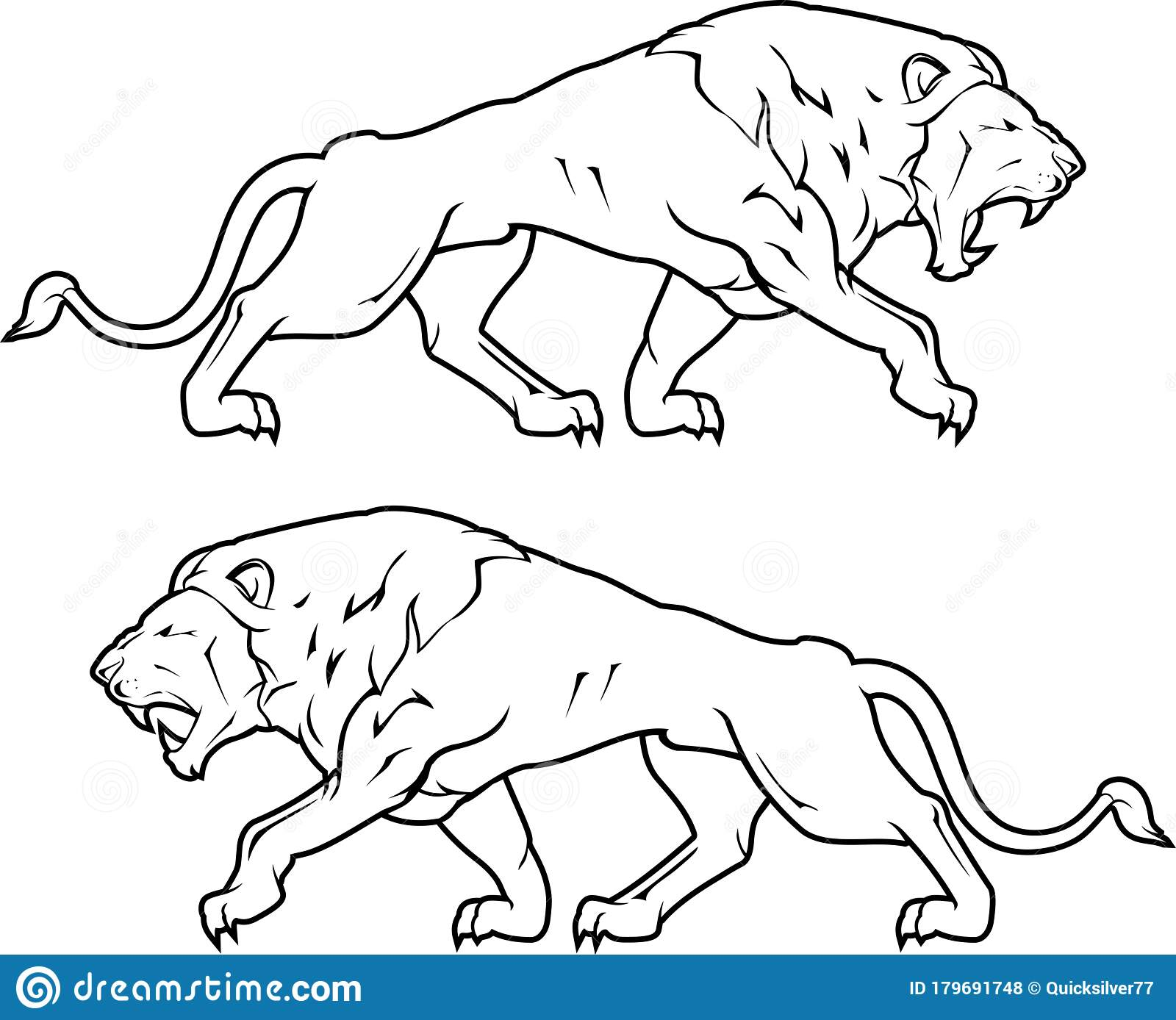 Full Body Lion Stock Illustrations 42 Full Body Lion Stock Illustrations Vectors Clipart Dreamstime Lion tamers guide to teaching. dreamstime com