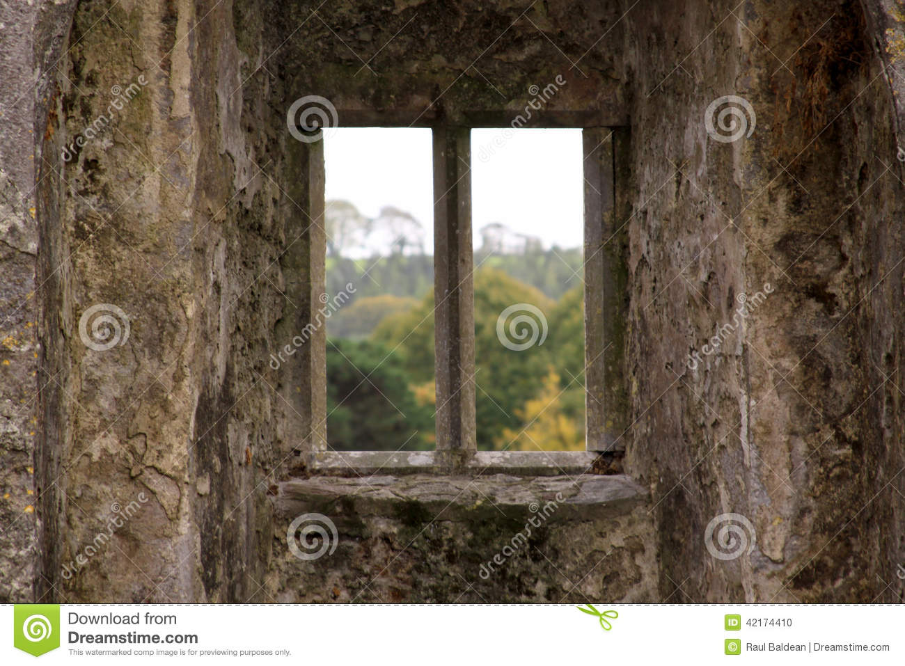 Isolated window of a castle