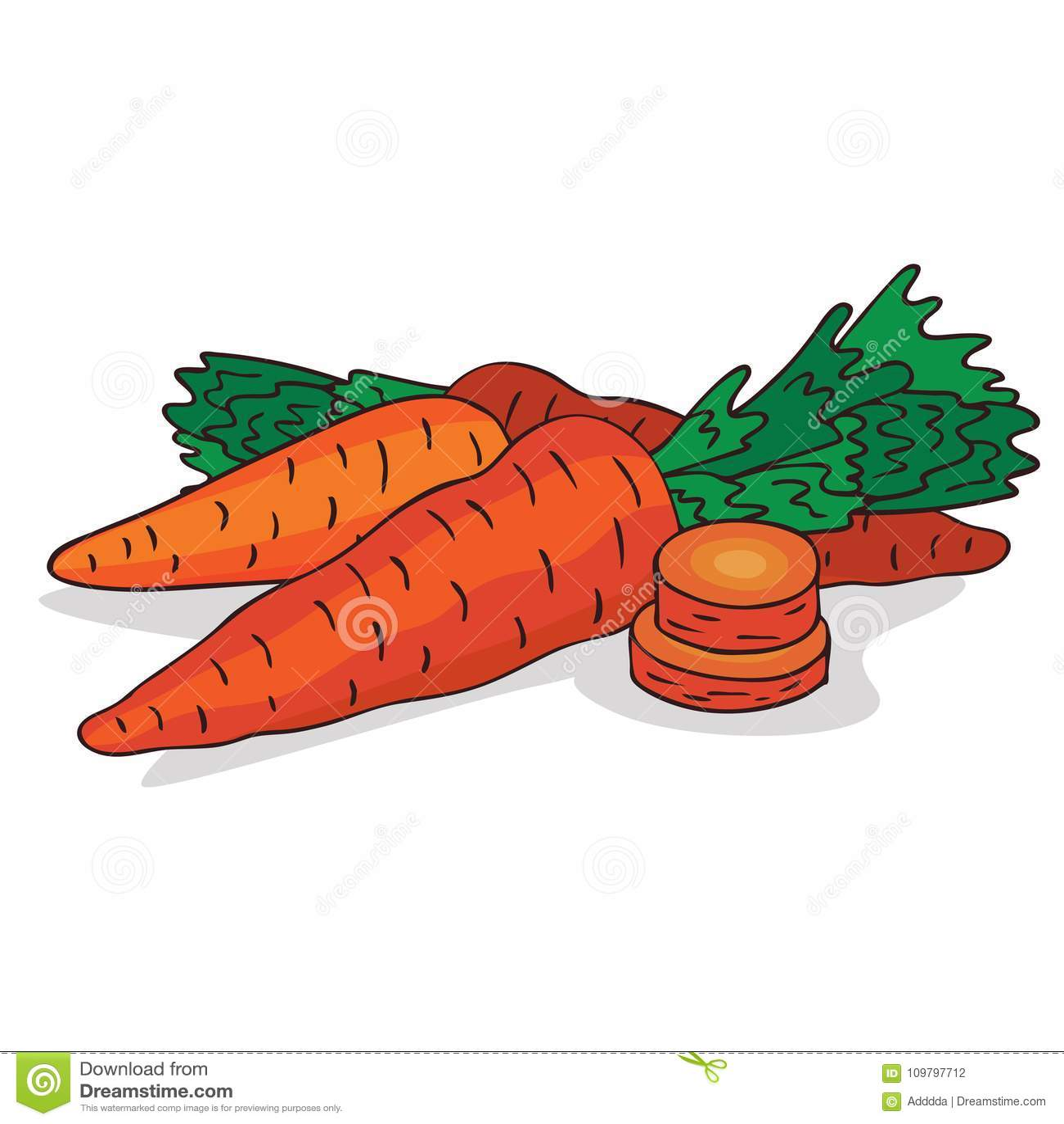 Isoleer rijp wortelwortelgewas