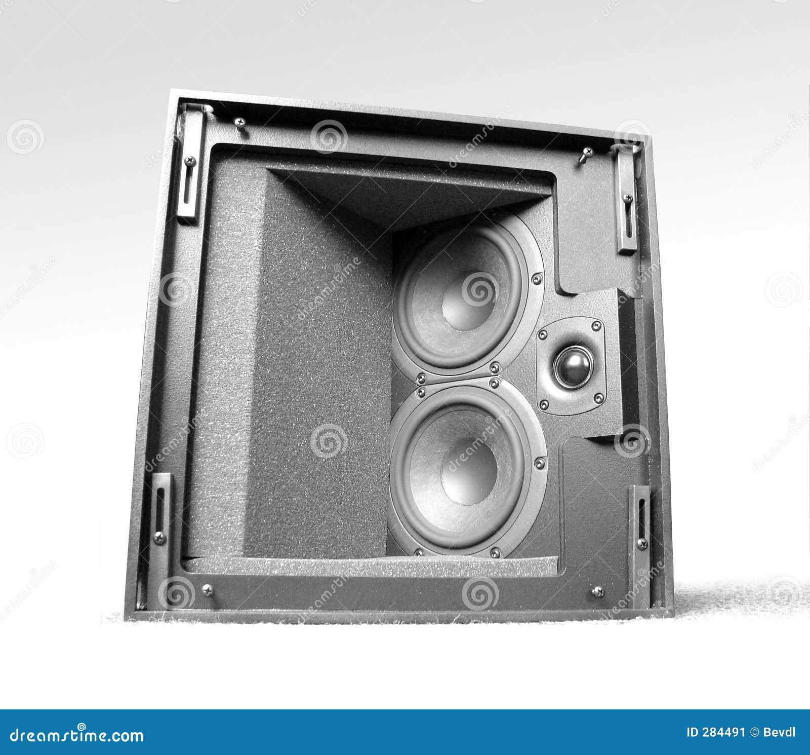 Isolerad högtalare