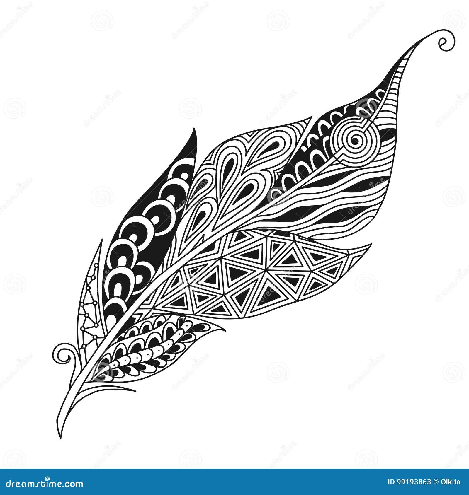 Isolerad hand dragen fjäder för fågel för svart översiktsmonokromabstrakt begrepp utsmyckad på vit bakgrund Prydnad av kurvlinjer