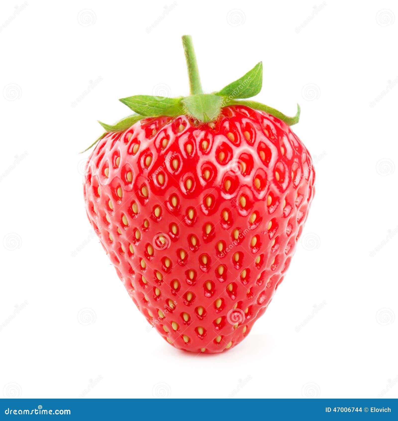 Isolerad jordgubbewhite