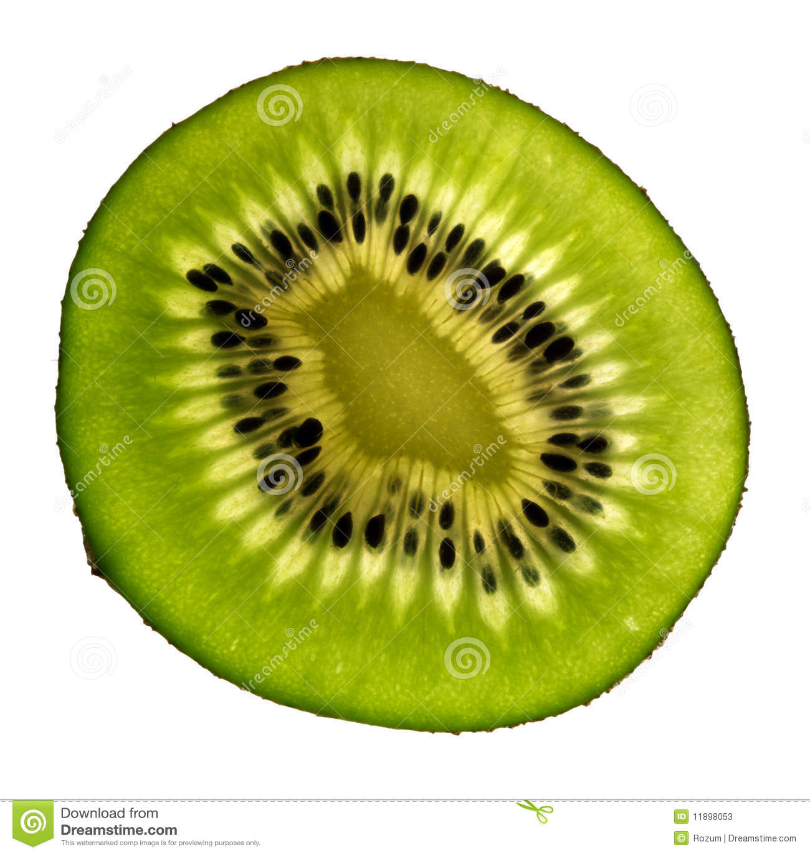 Isolerad kiwi
