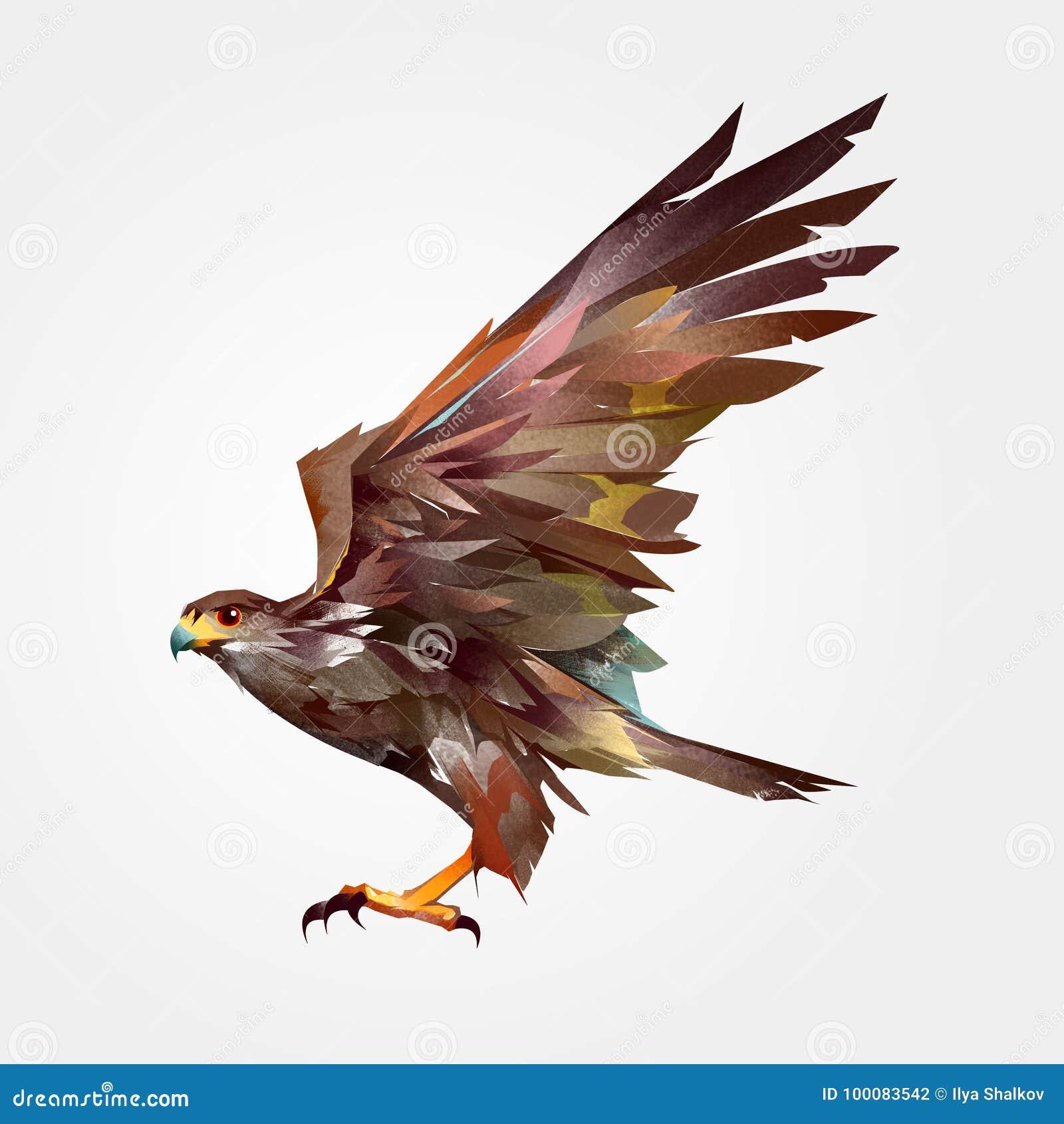 Isolerad kulör målad hök för flygfågel i sidan