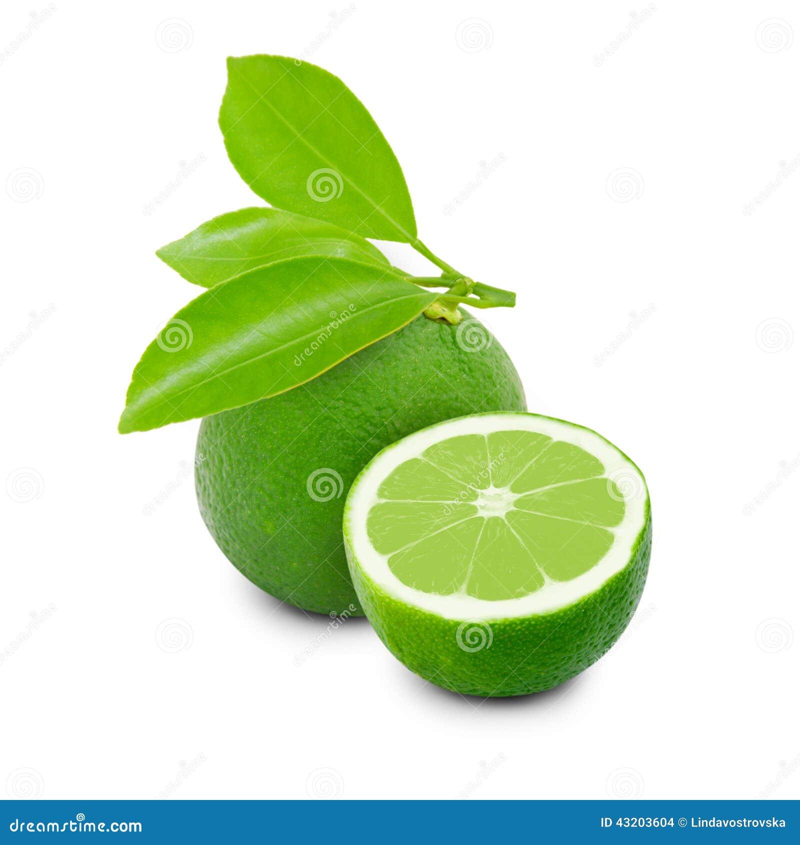 Download Isolerad limefrukt arkivfoto. Bild av mål, natur, naturligt - 43203604
