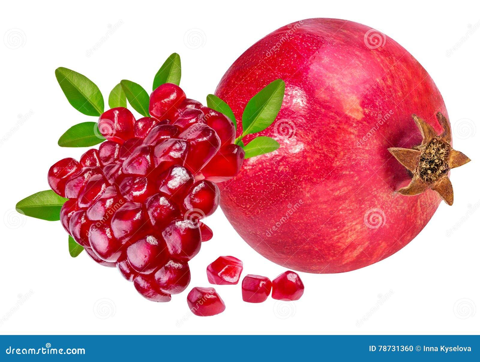 Isolerad pomegranatewhite