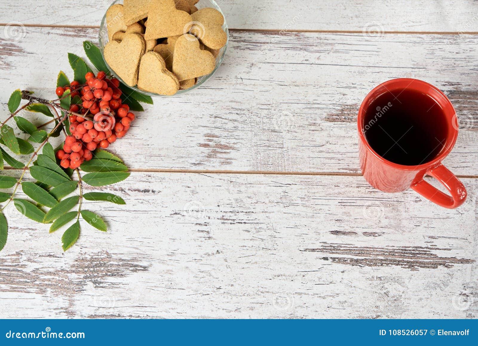 Isolerad rönnwhite för bakgrund filial Ljust rödbrun kakahjärtor RÖTT CIRKLA