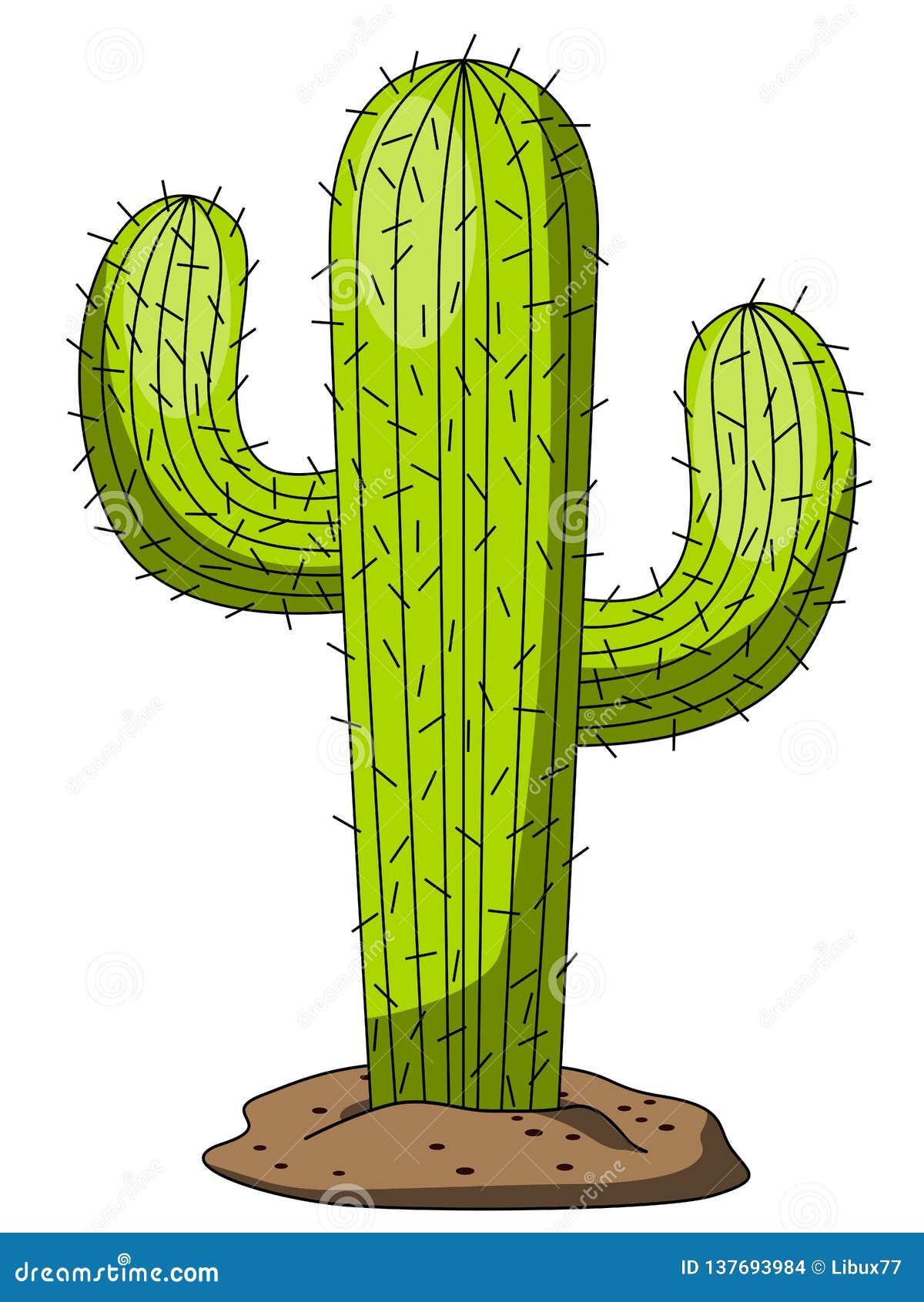 Kaktus Tecknad