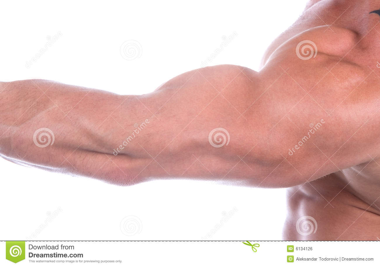 (Isolerade) Bicep,
