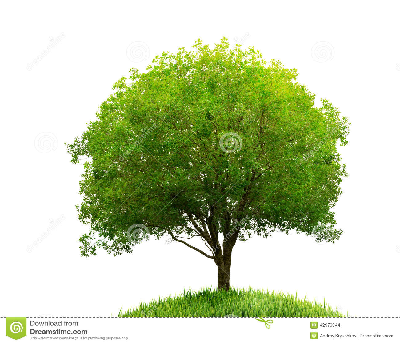Isolerade träd och gräs