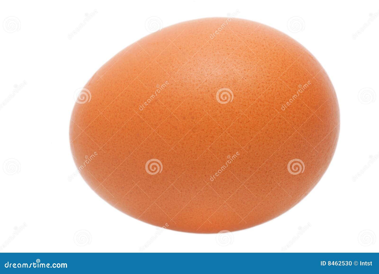 Isolerat brunt ägg