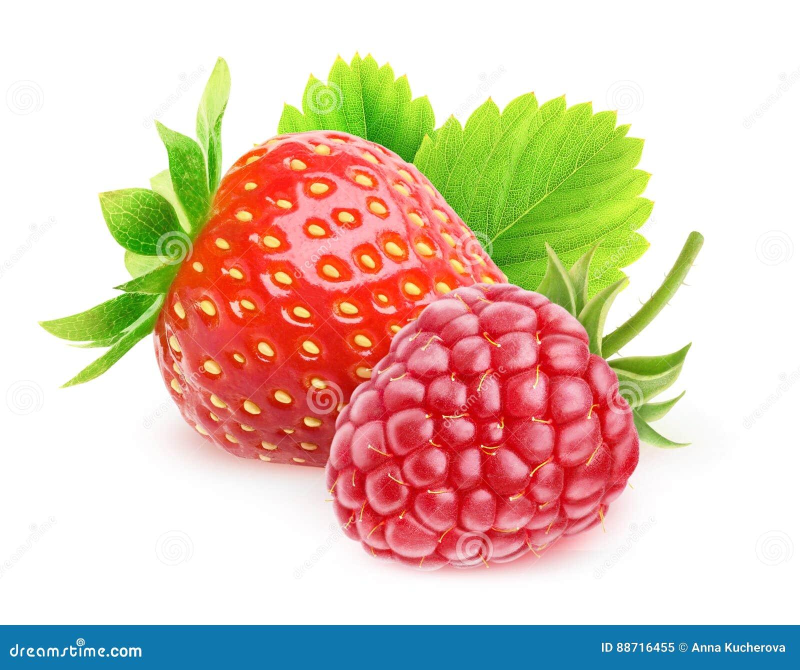 Isolerat jordgubbe och hallon