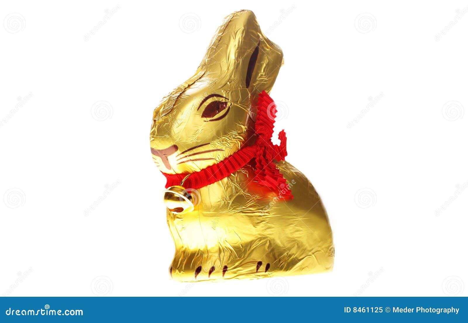 Isolerat kaninchokladeaster guld-