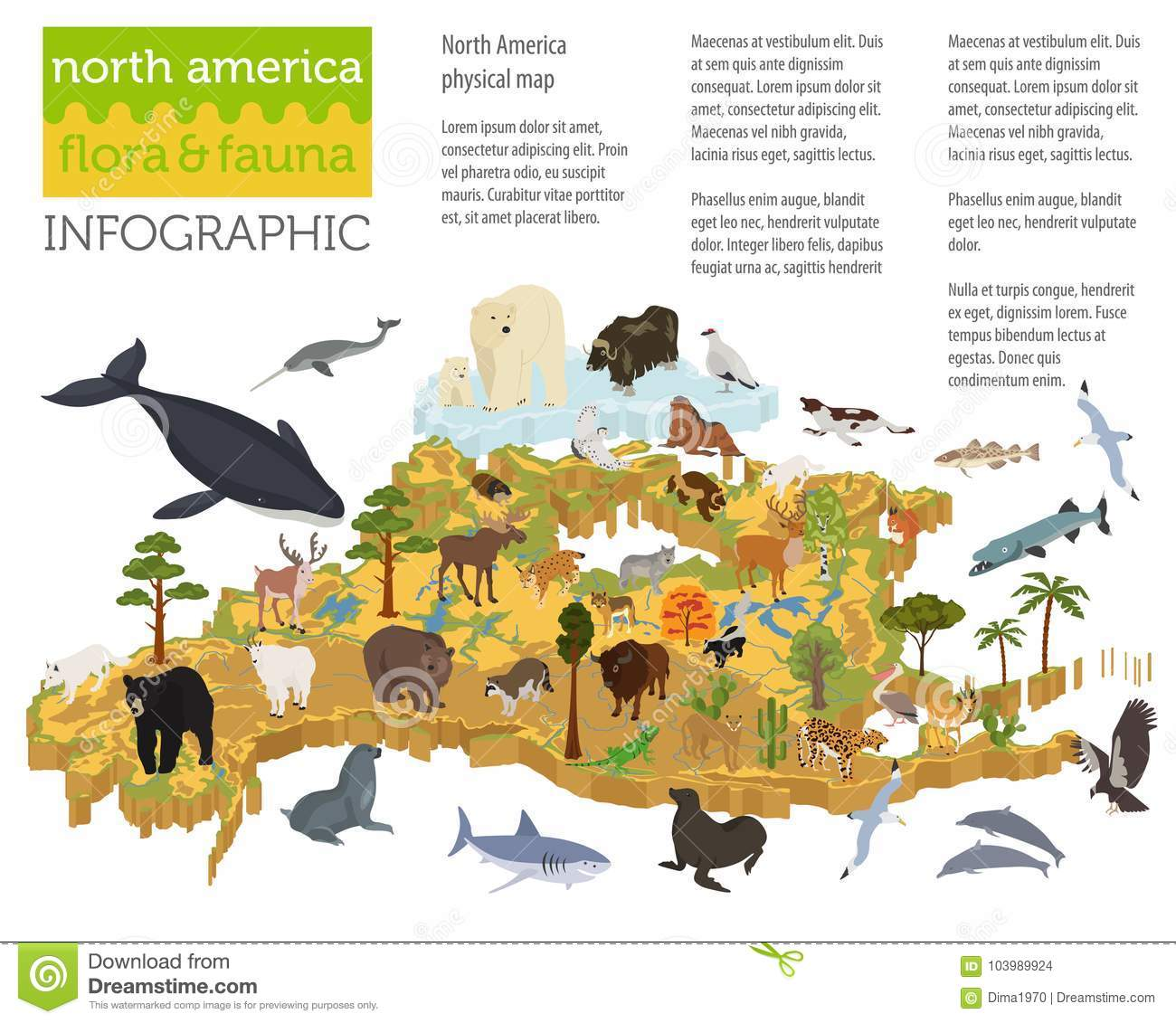 Download Isometric 3d North America Flora And Fauna Map Elements. Animals  Stock Vector   Illustration