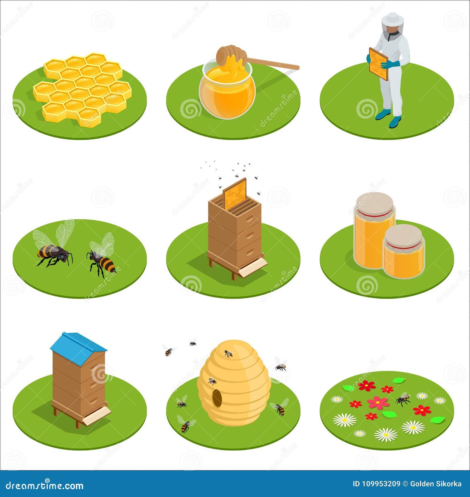 Isometric miód odizolowywać ikony ustawiać z pszczołami, pszczelarka pracują na pasiece, rój, pszczoła, honeycomb również zwrócić