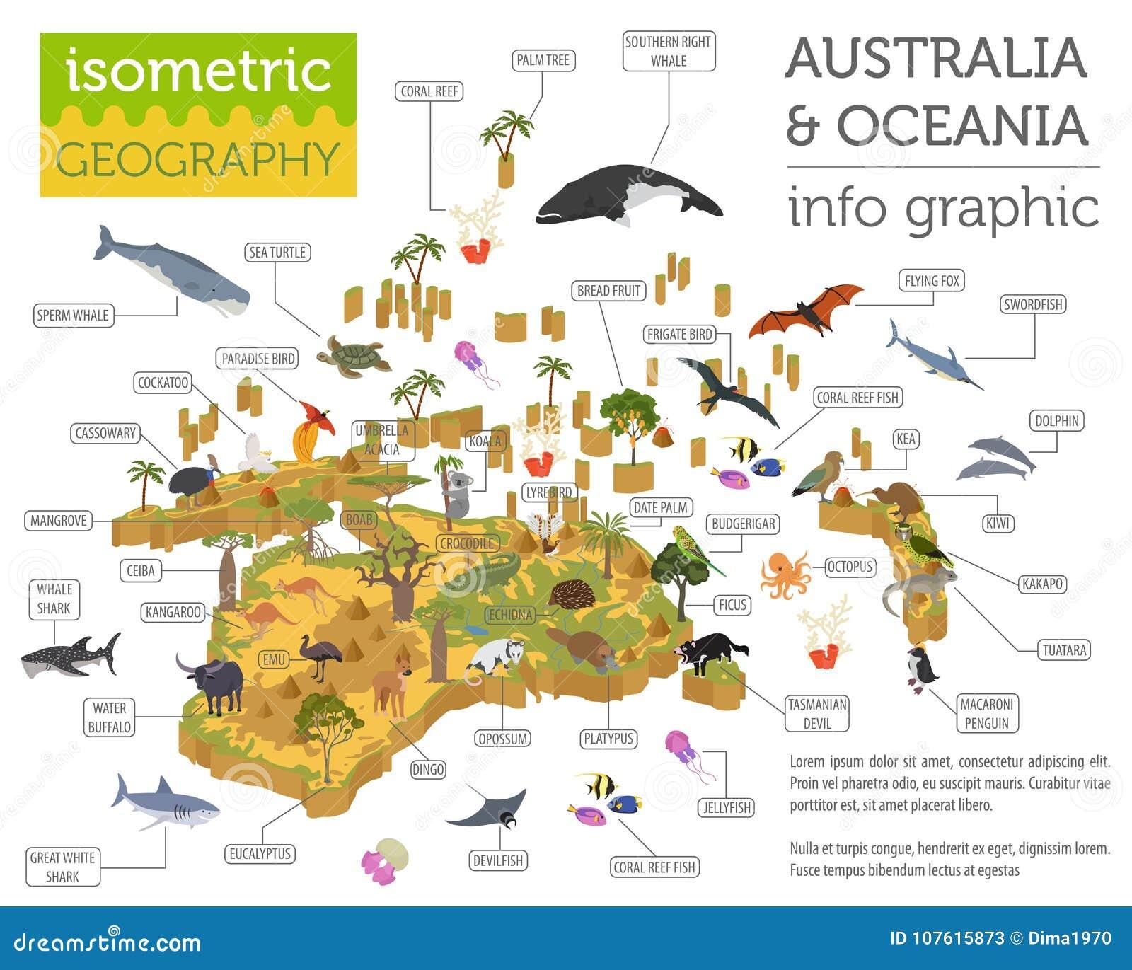 Isometrische 3d Australien Und Ozeanien Flora Und Fauna Zeichnen