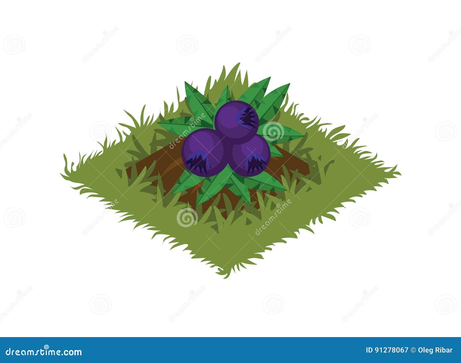 Isometrisk säng för tecknad filmfruktträdgård som planteras med Berry Bush - beståndsdelar för den Tileset översikten