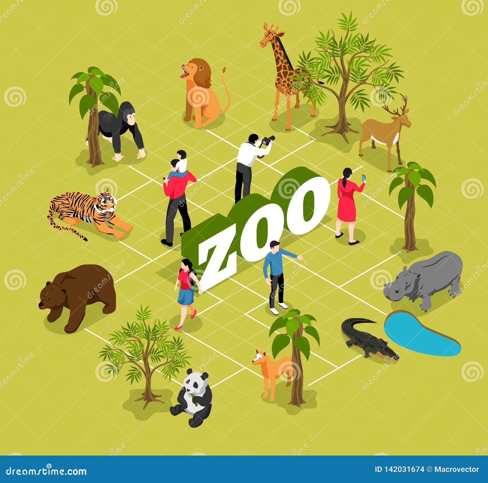 Isometriskt flödesdiagram för zoo