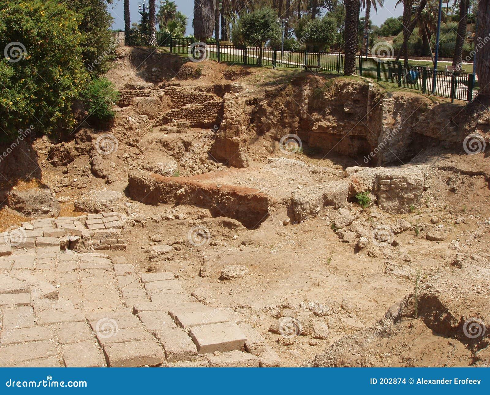 Israel gammala jaffa