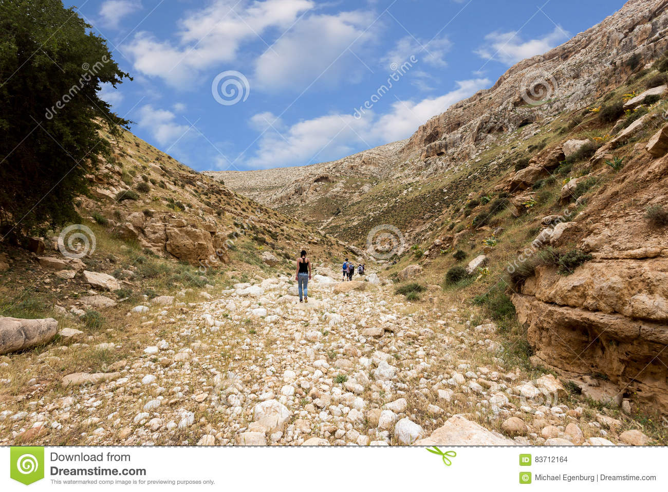 ISRAEL, NEGEV DESERT - APRIL 07, 2016: People Go Through Rocky Desert. ISRAEL, NEGEV DESERT Editorial Stock Image