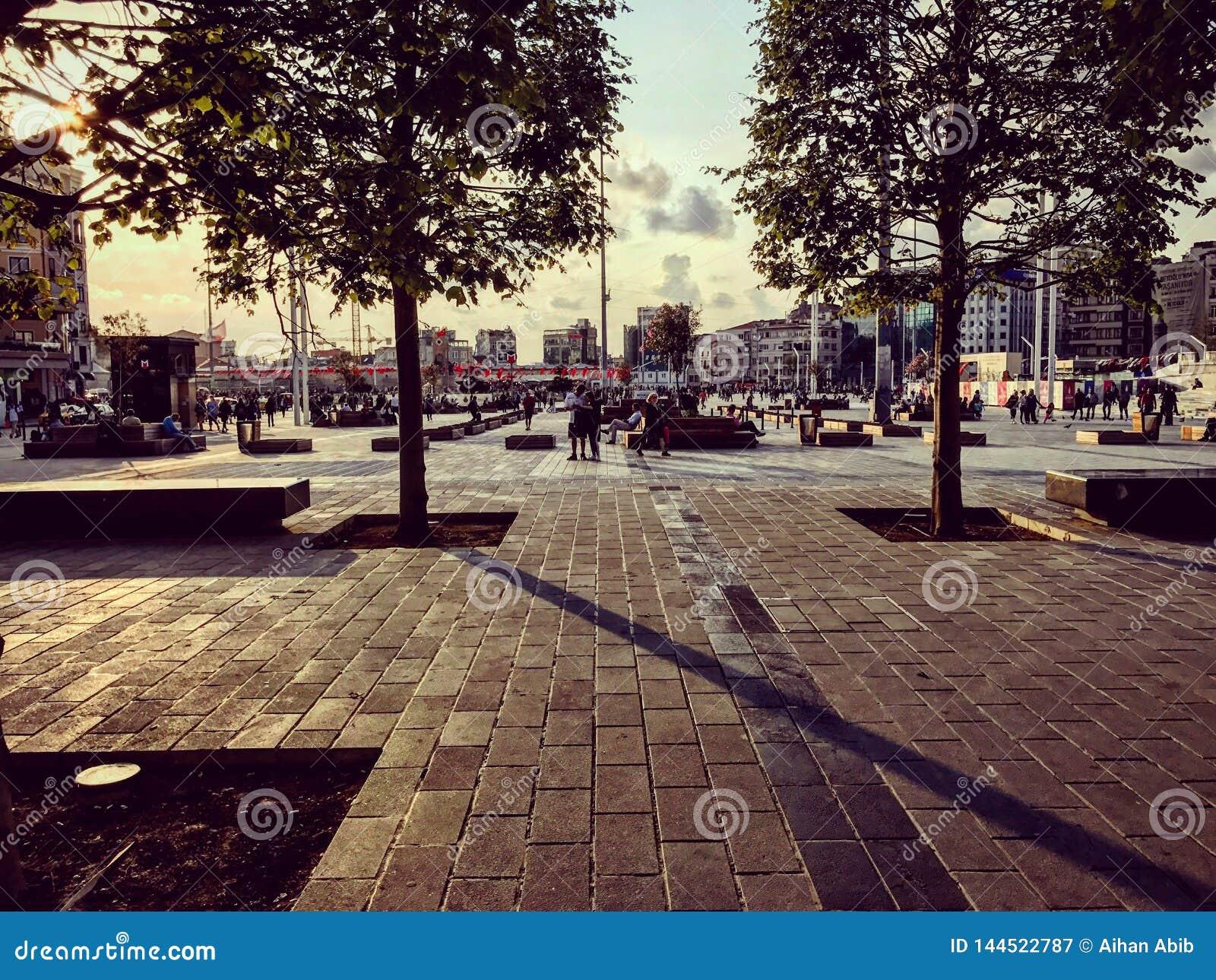 Istanbul parkerar Taksim