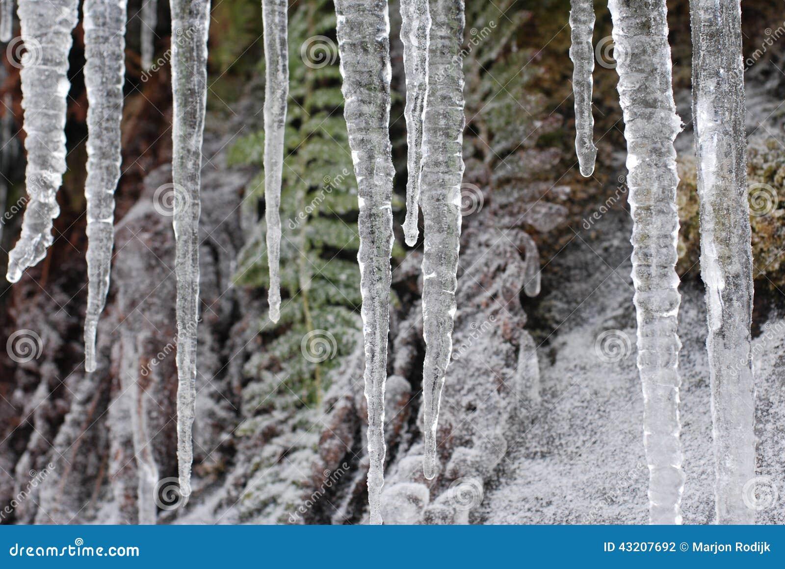 Download Istappar arkivfoto. Bild av kallt, frost, istappar, frostigt - 43207692