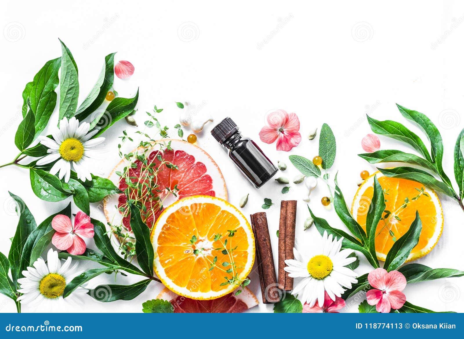 Istotny olej dla piękno skóry Mieszkania piękna nieatutowi składniki na lekkim tle, odgórny widok Piękno stylu życia zdrowy pojęc