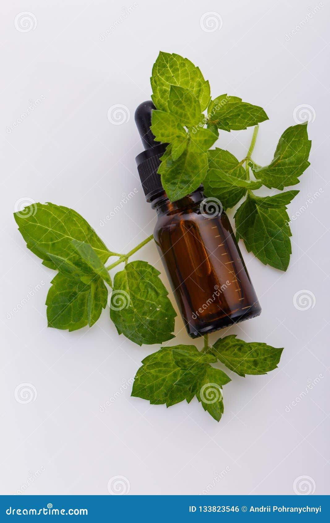 Istotny olej miętówka na białym tle