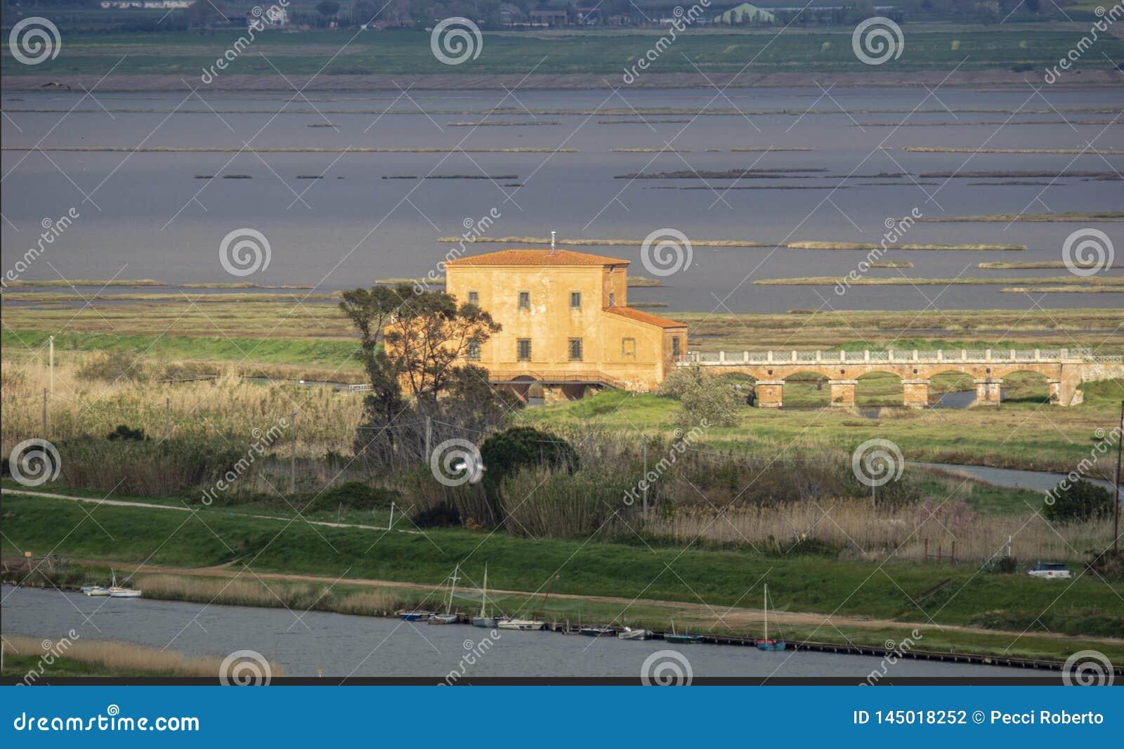 Italia, Toscana, della Pescaia, vista de Castiglione de la reserva de naturaleza de Diaccia Botrona desde arriba