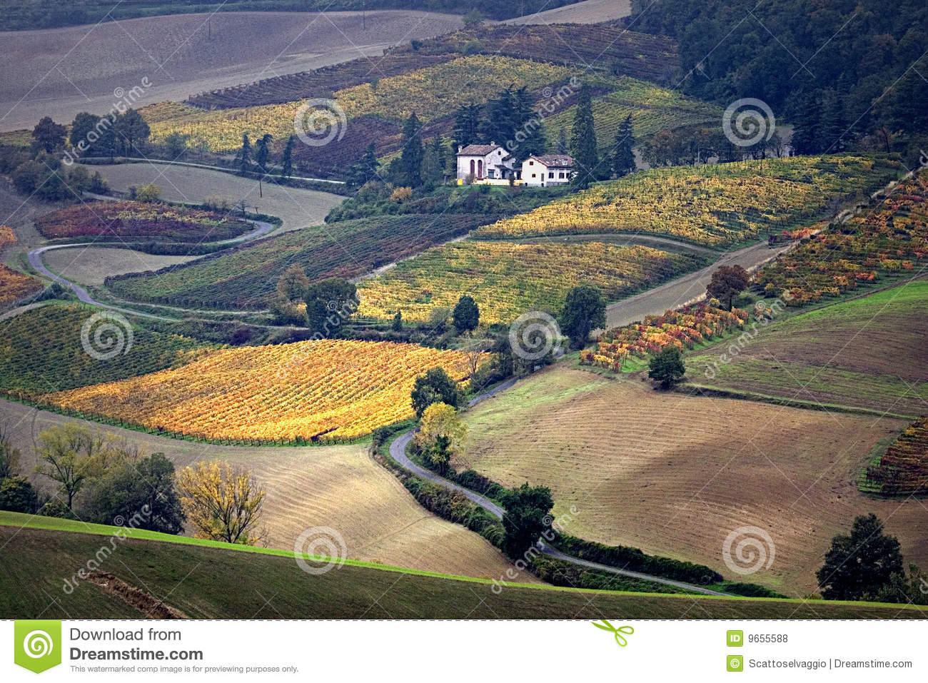 Italian country: Oltrepò Pavese. Vineyards and fields in Italy, Pavia.