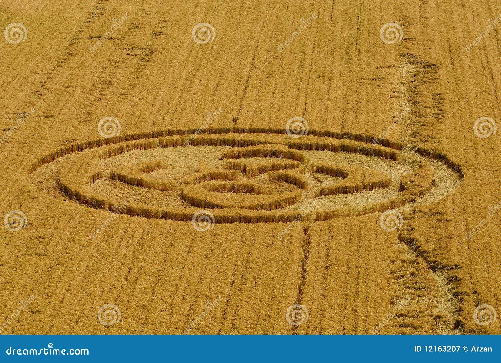 Italian crop circle