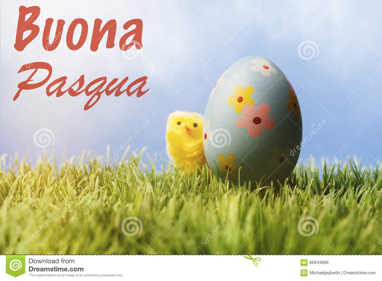 Italian easter greeting text blue easter egg and chicken stock royalty free stock photo kristyandbryce Images