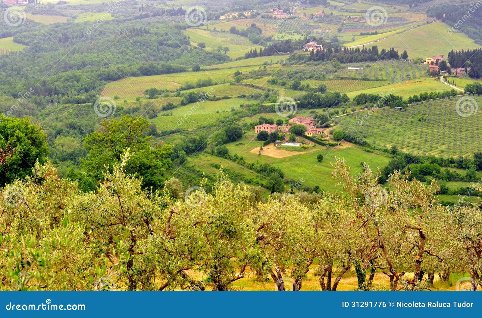Italian green landscape in tuscany italy stock photo for Green italy