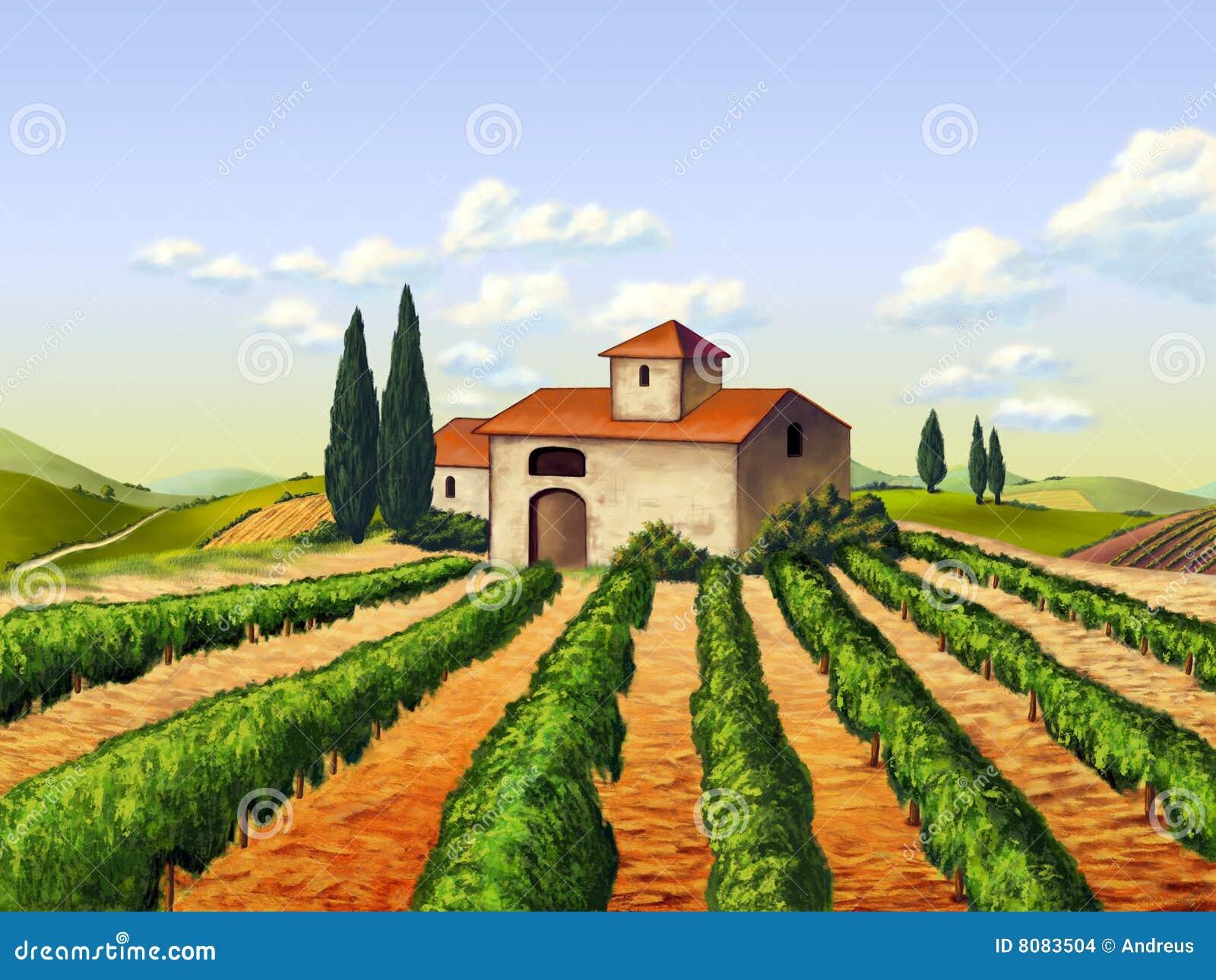 Italiensk vingård