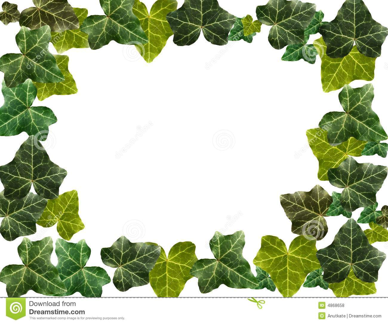 Ivy Border Royalty Free Stock Photos - Image: 4868658