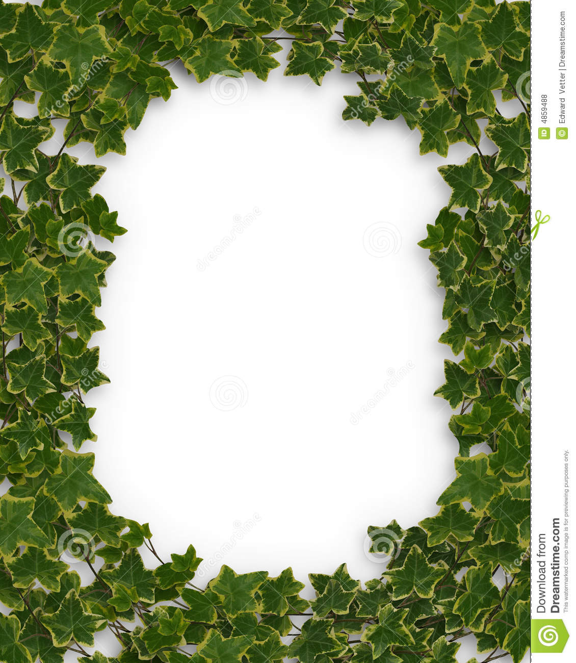Ivy Border Or Frame 3D Royalty Free Stock Photos - Image: 4859488