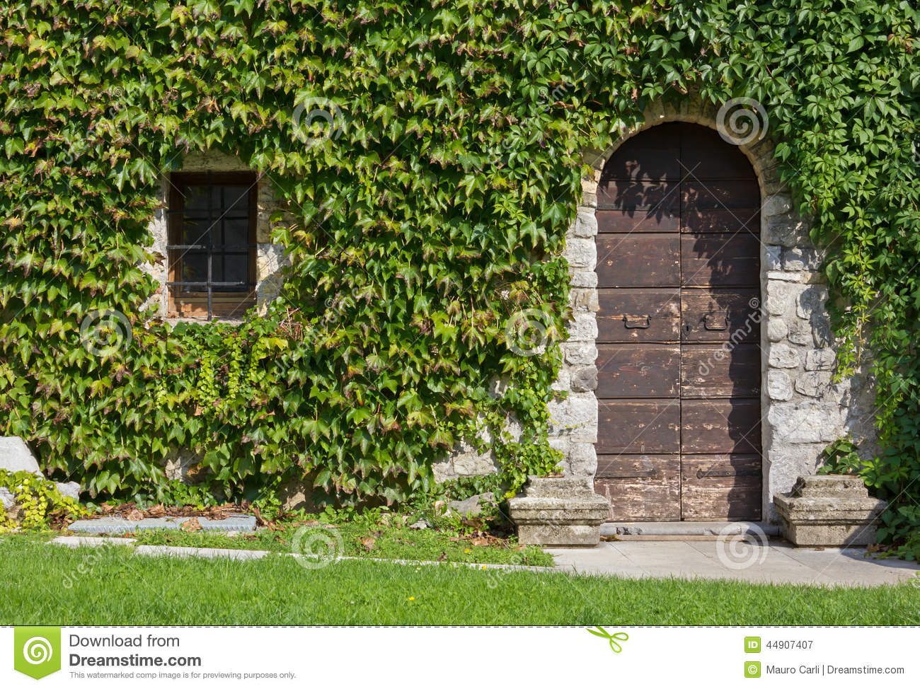 Ivy covered exterior wall of a historic building stock for Door in the wall