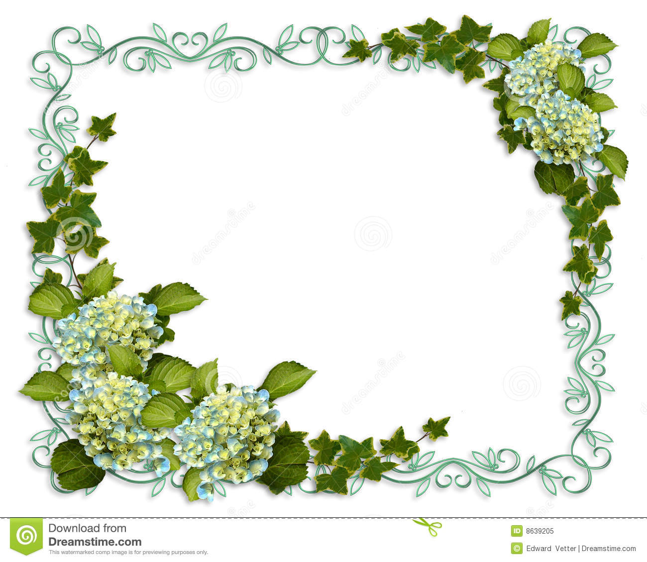 Ivy And Hydrangea Floral Border Invitation Stock